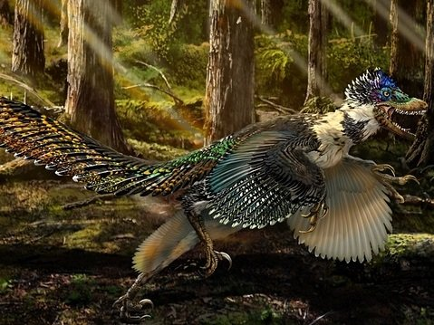 Ученые нашли клещей, паразитирующих на динозаврах
