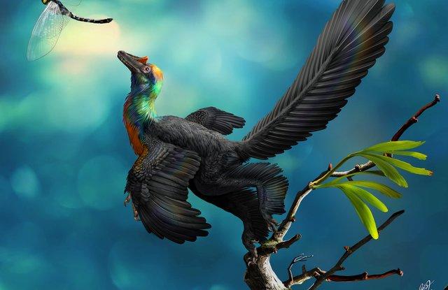 Ученые нашли останки цветного динозавра